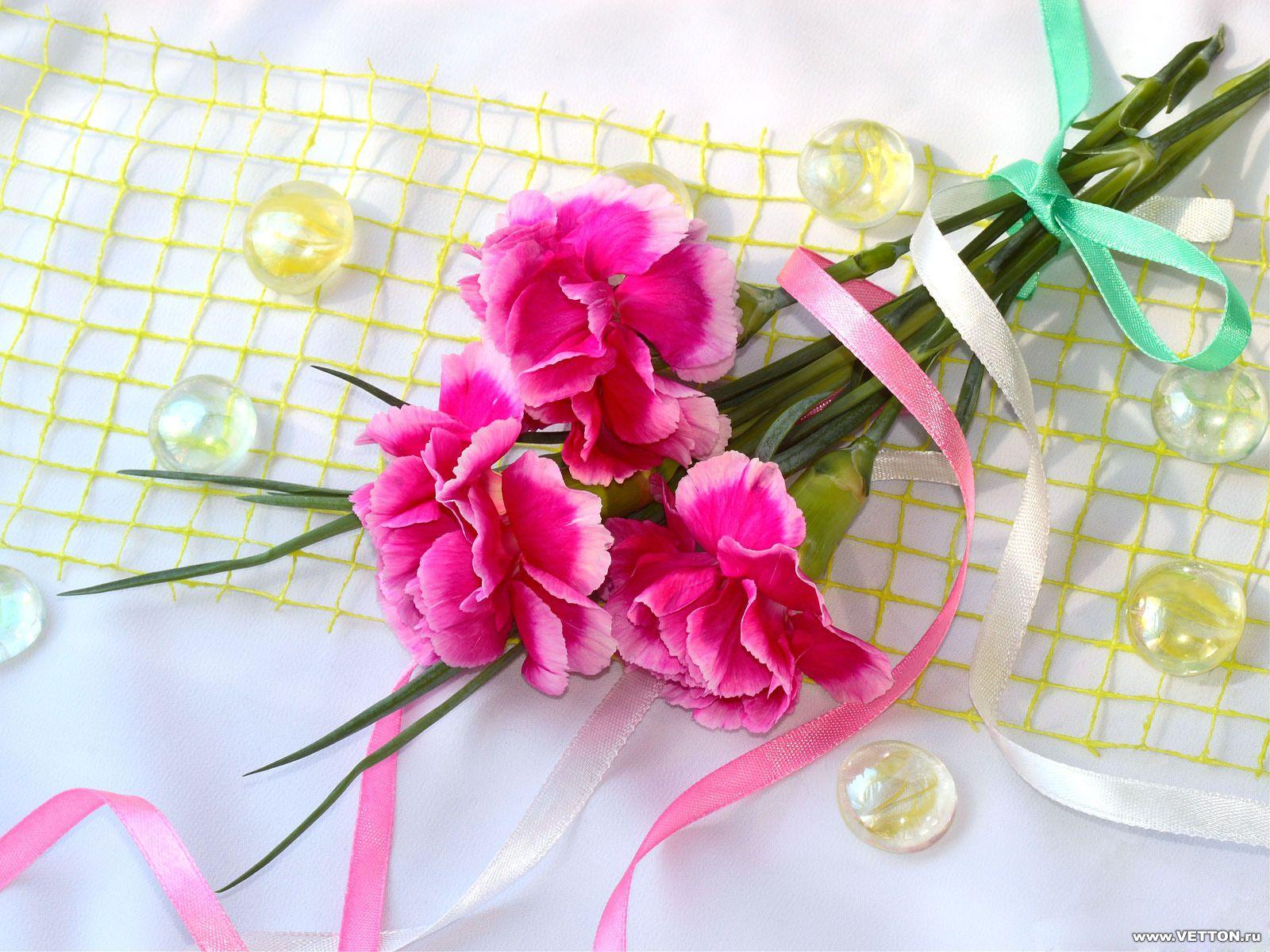 Обои для рабочего стола Цветы № 357
